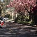 'Cassie': Roboter in Straußenform in Aktion (Foto: oregonstate.edu)